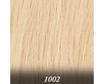 Salon Expert - 50 cm (20-pack) - 1002.Very Light Ash Blond
