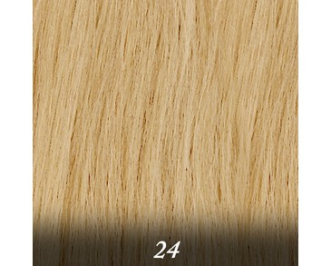 Salon Expert - 50 cm (20-pack) - 24.Ash Blond